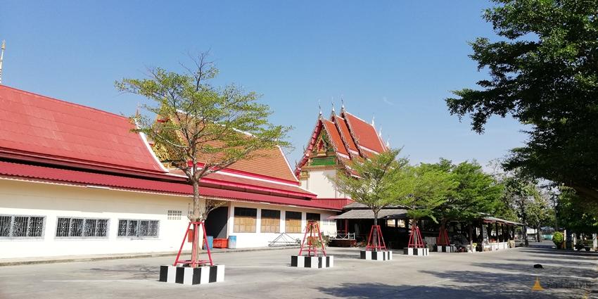watnongyai-saimai-036